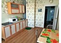Двухкомнатная квартира Белинского, 35